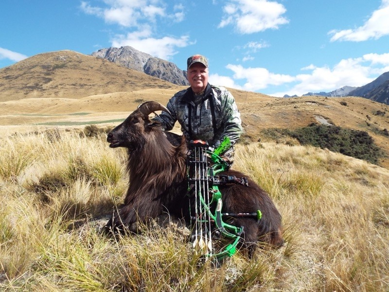350 Class Red Stag and Bull Tahr Hunt